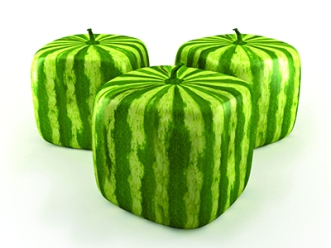 Square watermelons - web